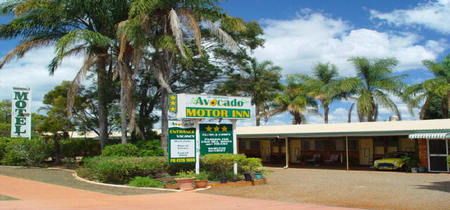 Avocado Motor Inn - Accommodation Yamba