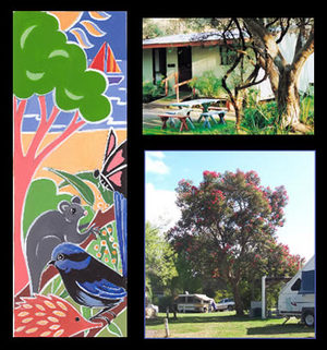 Bushland Cabins - Accommodation Yamba