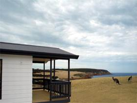 Waves and Wildlife - Accommodation Yamba