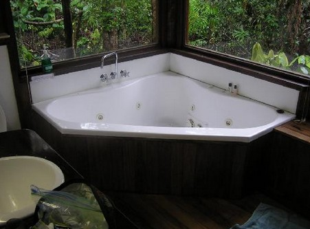 The Canopy Rainforest Tree Houses and Wildlife Sanctuary - Accommodation Yamba