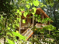 Rivers Edge Rainforest Retreat - Accommodation Yamba