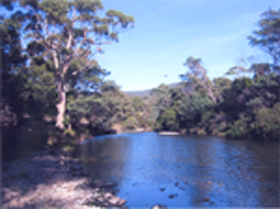 Douglas River Cabin - Accommodation Yamba