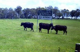 Cluan Homestead - The Managers Residence - Accommodation Yamba