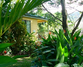 Daintree Valley Haven - Accommodation Yamba