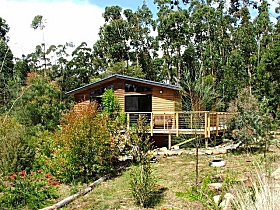 Southern Forest Accommodation - Accommodation Yamba