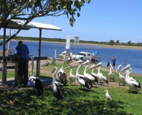 Mountain View Caravan and Mobile Home Village - Accommodation Yamba