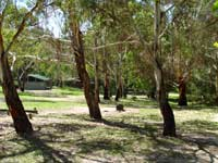 Woods Reserve - Accommodation Yamba