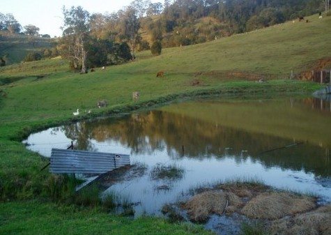Barkeldine Farm Country Retreat - Accommodation Yamba