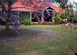 Minmore Farmstay Bed and Breakfast - Accommodation Yamba