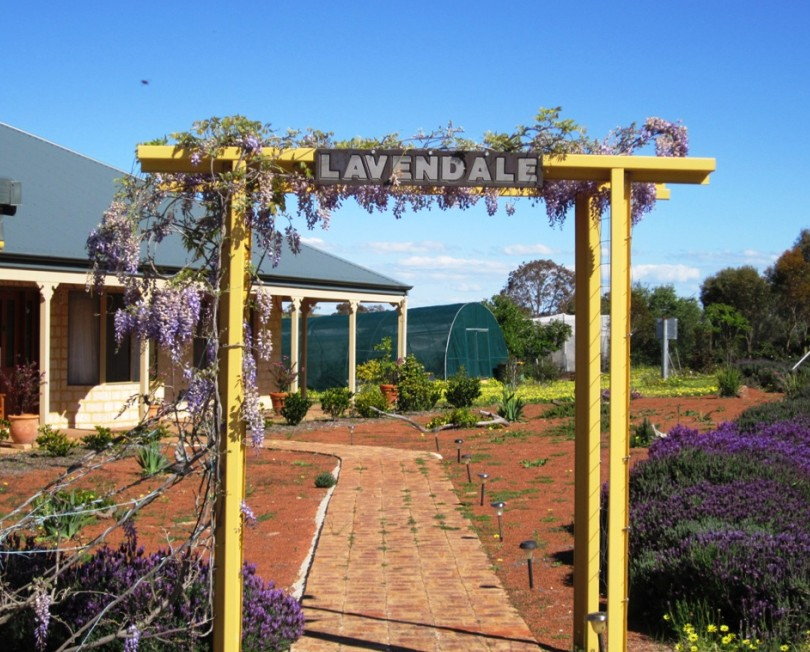 Lavendale Farmstay and Cottages - Accommodation Yamba