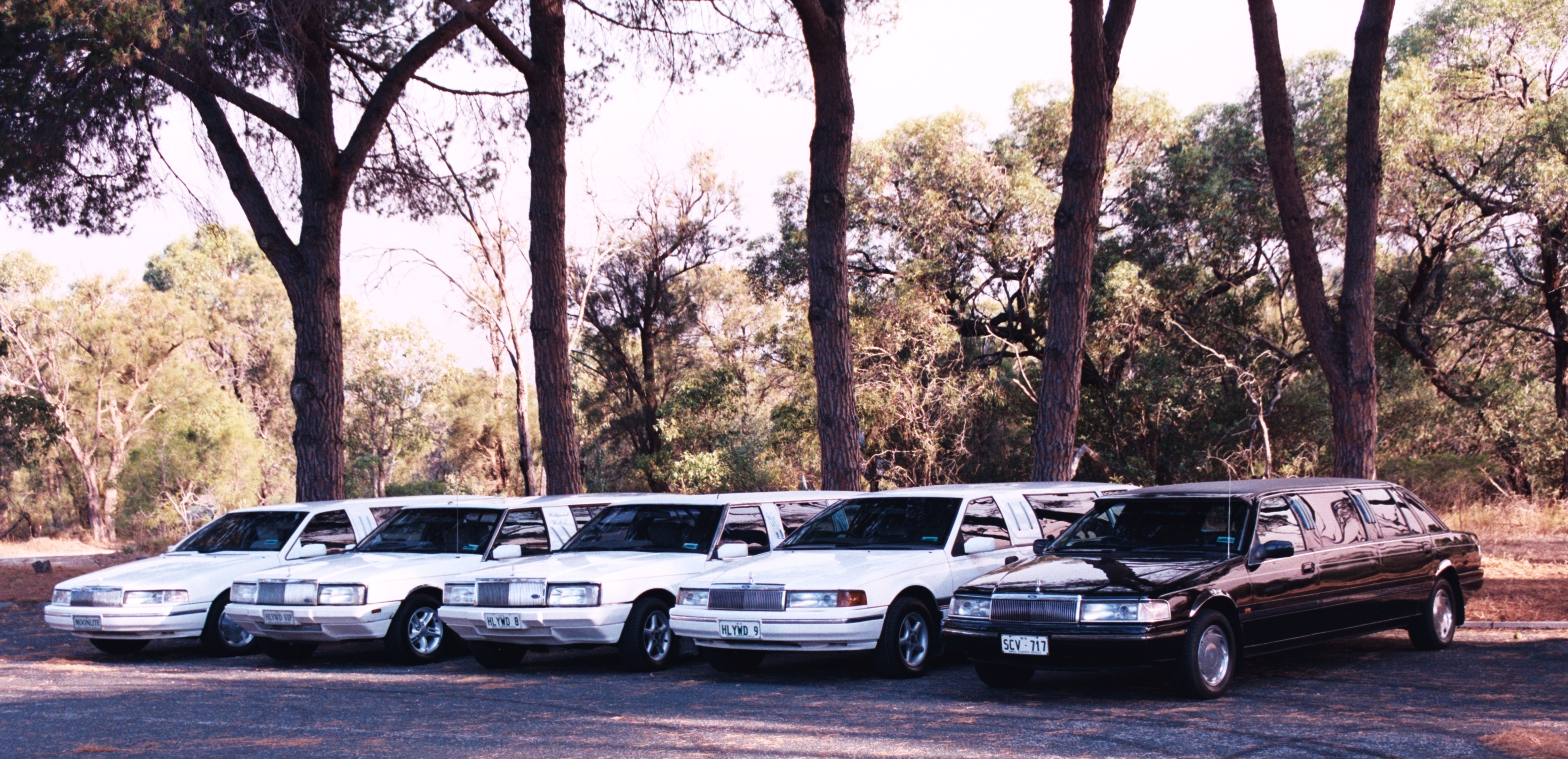 Hollywood VIP Limousines - Accommodation Yamba