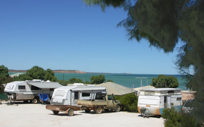 Blue Dolphin Caravan Park and Holiday Village - Accommodation Yamba