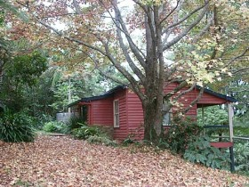 Turkeys Nest Rainforest Cottage - Accommodation Yamba