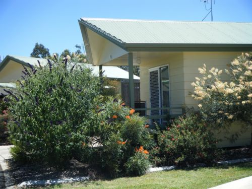 Pepper Tree Cabins - Accommodation Yamba