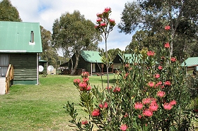 Derwent Bridge Chalets  Studios - Accommodation Yamba