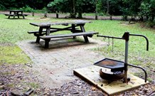 Bellbird campground - Accommodation Yamba