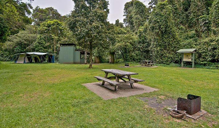 Forest Tops campground - Accommodation Yamba