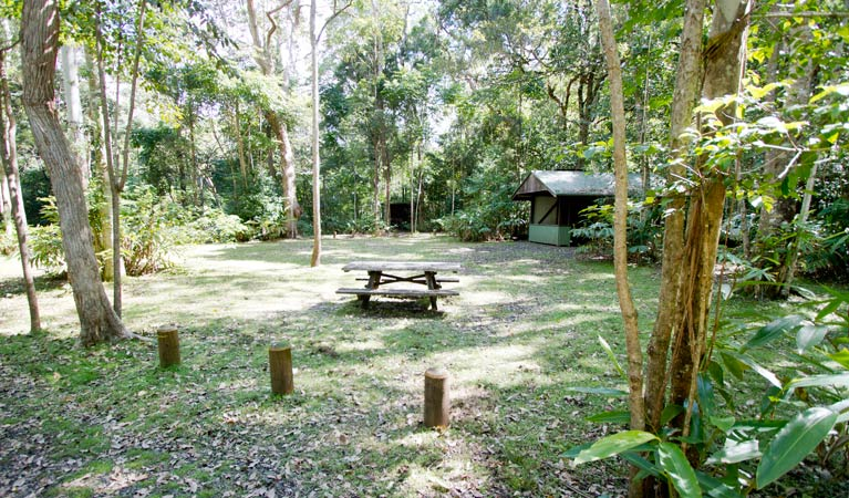 Iron Pot Creek campground - Accommodation Yamba