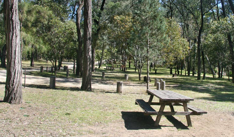 Lemon Tree Flat campground - Accommodation Yamba