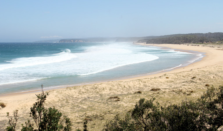 Middle Beach campground - Accommodation Yamba