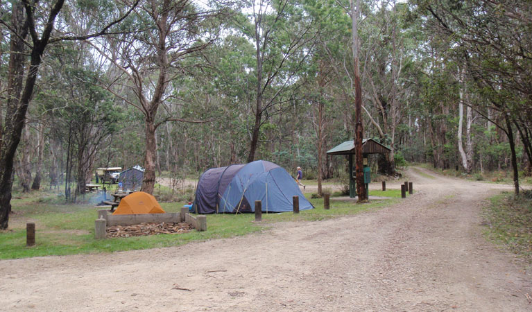 Native Dog campground - Accommodation Yamba