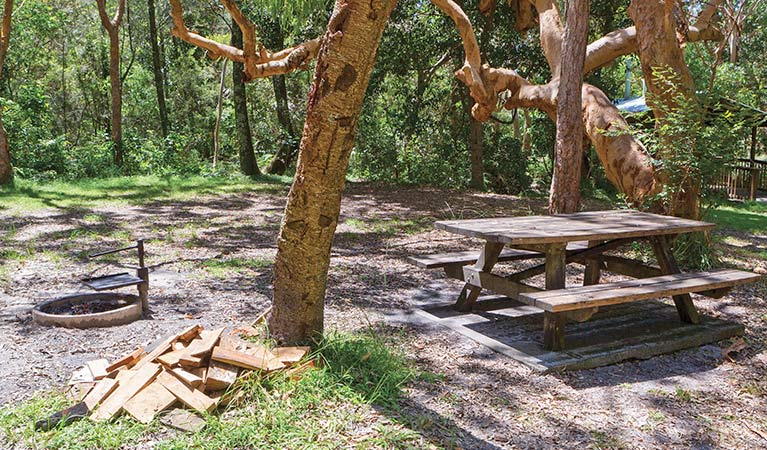Station Creek campground - Accommodation Yamba