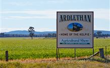 The Ardlethan Kelpie Caravan Park - Accommodation Yamba