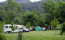Sandy Hollow Tourist Park - Sandy Hollow - Accommodation Yamba