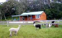 Moorallie Cottage Farm Stay - Accommodation Yamba