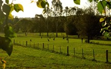Stone Cottage Mittagong - Accommodation Yamba