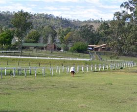 Kellarni Downs Farmstay-Scenic Rim - Accommodation Yamba
