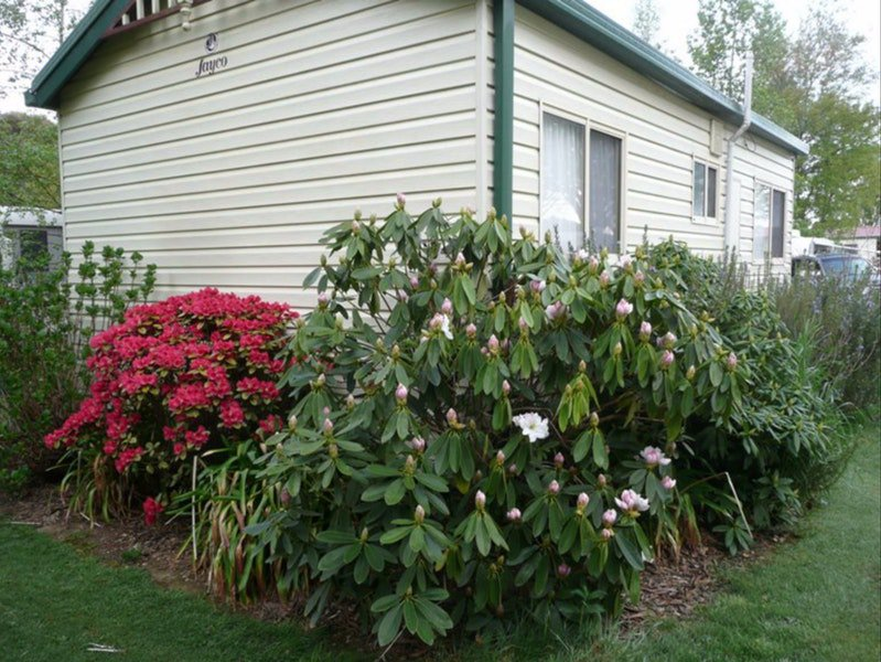 Jenolan Caravan Park - Accommodation Yamba