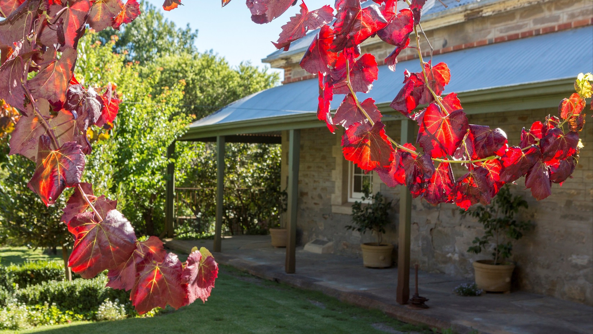 Grand Cru Estate Homestead - Accommodation Yamba