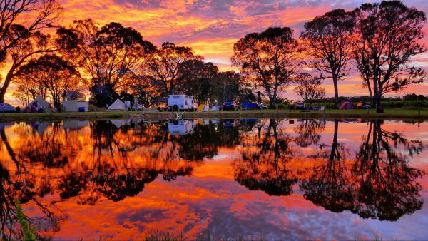 Coonawarra Bush Holiday Park - Accommodation Yamba