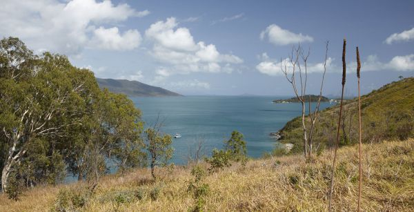 Molle Island National Park Whitsundays National Park Camping Ground - Accommodation Yamba