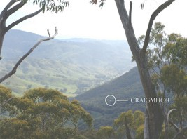 Craigmhor Mountain Retreat - Accommodation Yamba
