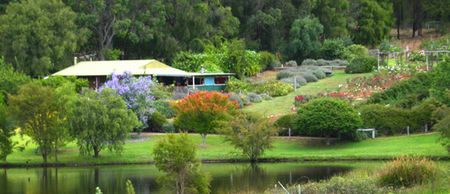 Pemberton Lavender and Berry Farm Cafe and Cottages - Accommodation Yamba