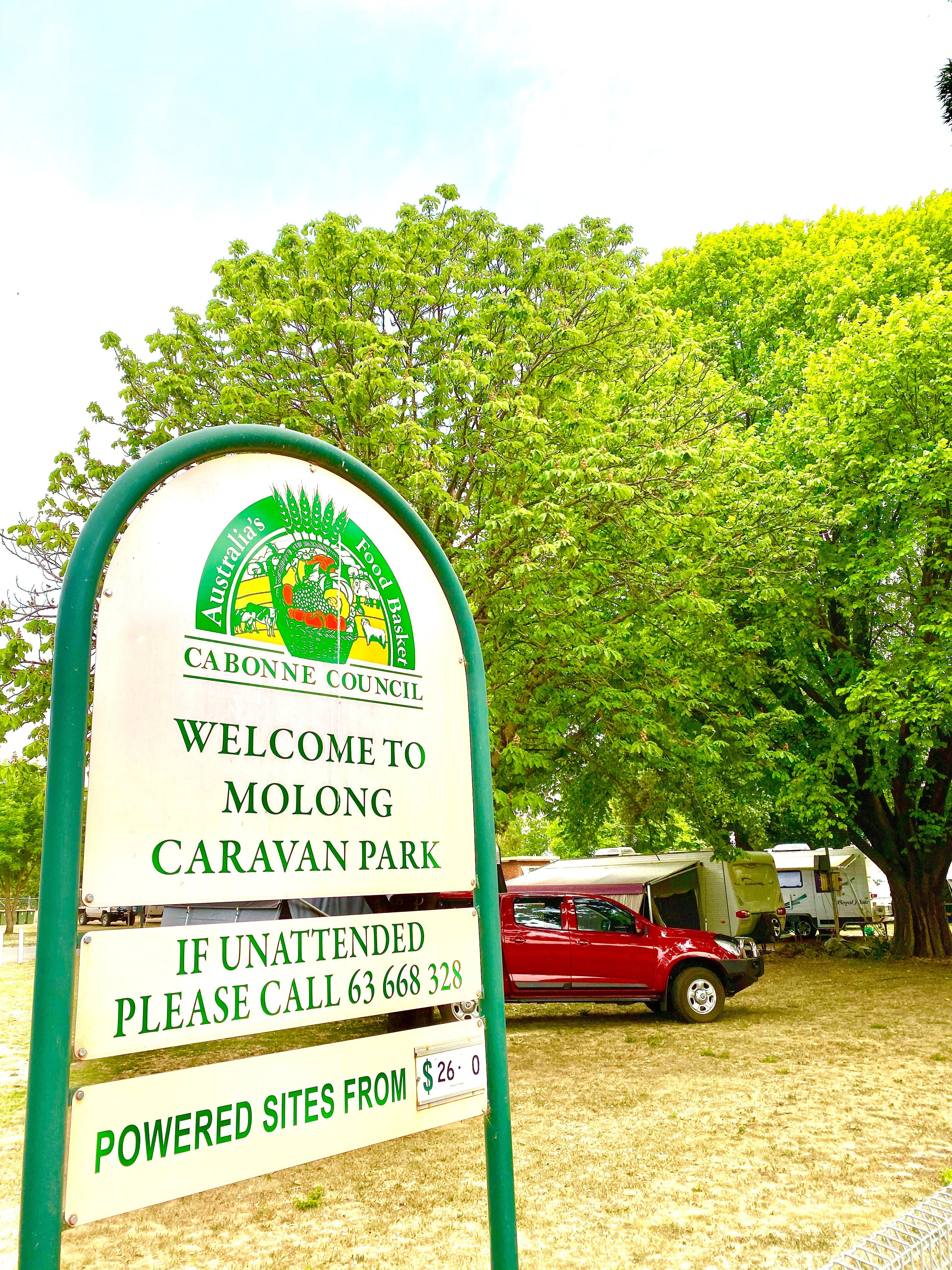 Molong Caravan Park - Accommodation Yamba