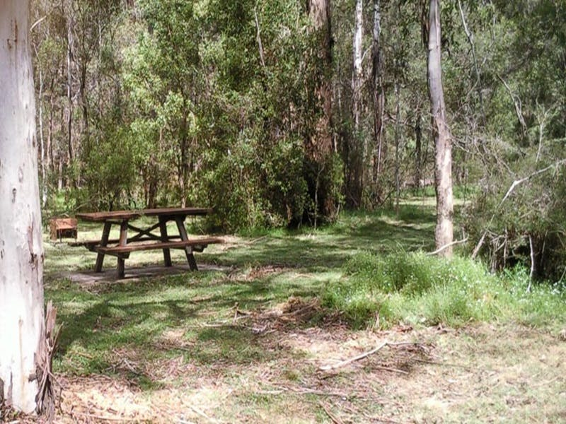 Mulloon Creek campground - Accommodation Yamba