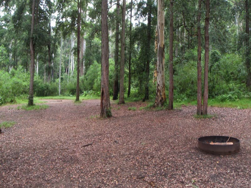 Murphys Glen campground - Accommodation Yamba