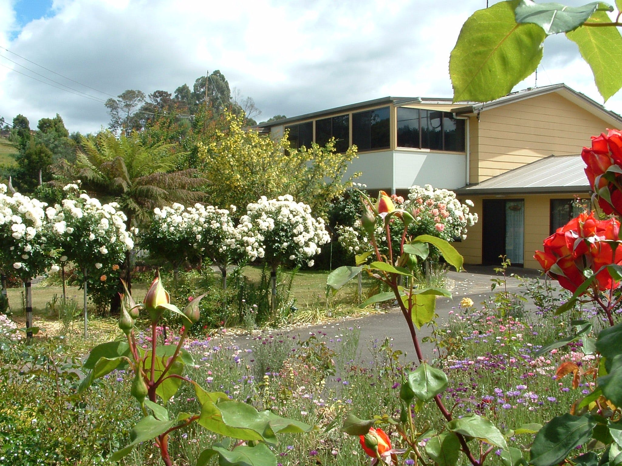 North East Restawhile Bed and Breakfast - Accommodation Yamba