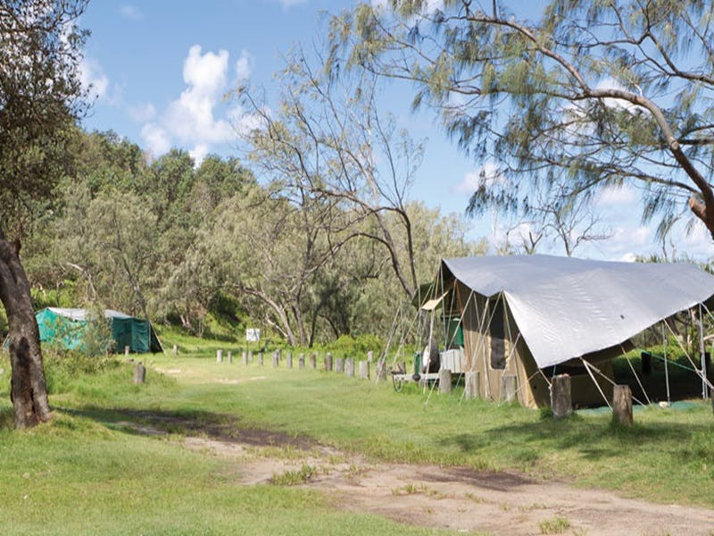 Pebbly Beach campground - Yuraygir National Park - Accommodation Yamba