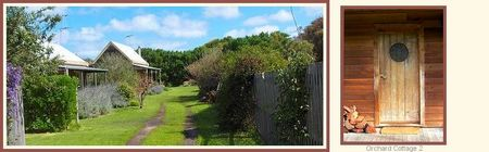 Orchard Cottage - Accommodation Yamba