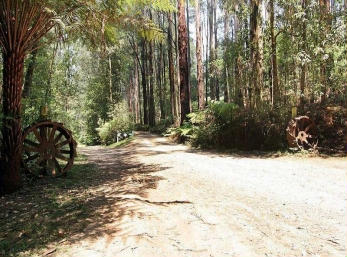 Hill n Dale Farm Cottages - Accommodation Yamba