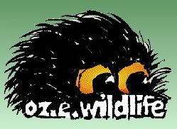 OZe Wildlife - Accommodation Yamba