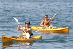 Manly Kayaks - Accommodation Yamba