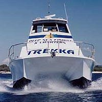 Sunshine Coast Fishing Charters - Accommodation Yamba