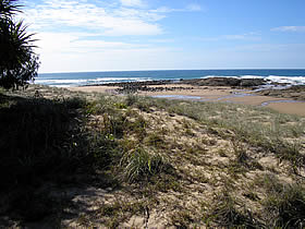 Deepwater National Park - Accommodation Yamba