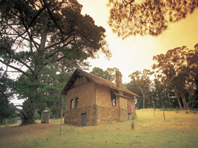 Heysen - The Cedars - Accommodation Yamba
