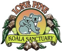 Lone Pine Koala Sanctuary - Accommodation Yamba